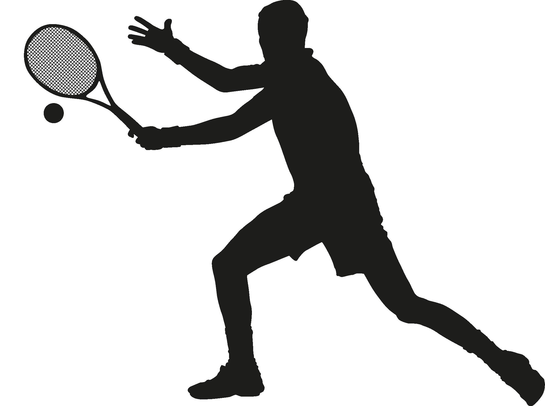 http://www.tkslaviaplzen.cz/wp-content/uploads/2018/07/tennis-ball-silhouette-23.png
